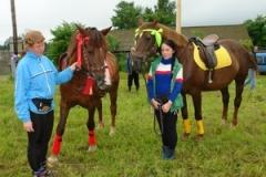 Лошадки пришли из Березовки