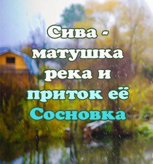 река Сосновка